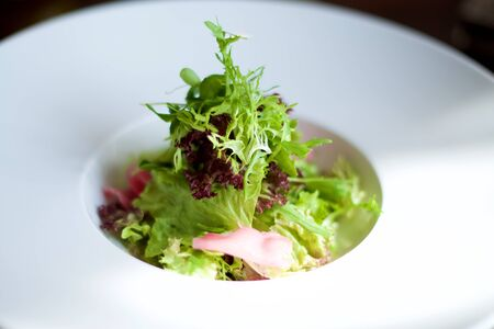 Small Gourmet salad on white plate