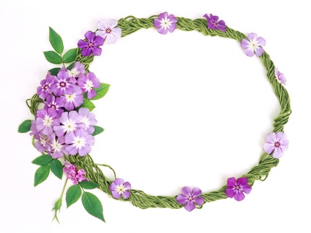floral frame  Stock Photo