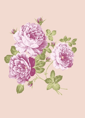 sateen: hand drawn - beautiful Rose bouquet design with Simple background