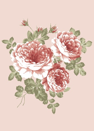 vintage roses: hand drawn - beautiful Rose bouquet design with Simple background