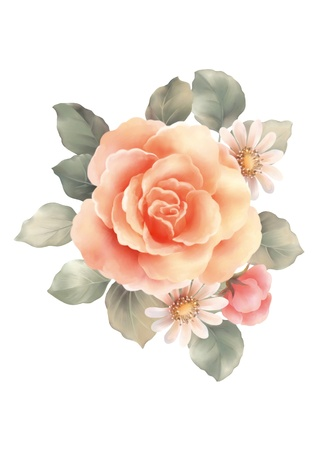 rose bouquet: illustration with beautiful  rose bouquet decoration  Stock Photo