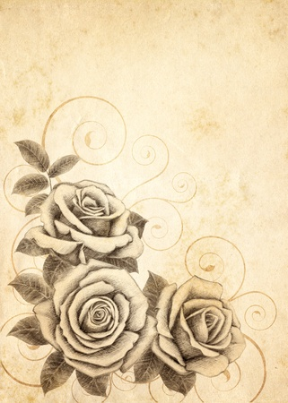 Old-styled rose. Freehand drawin-01 photo