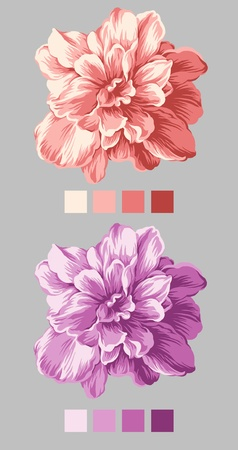 hand drawn - beautiful flower bouquet design with Simple background  photo