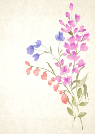 painterly: watercolor illustration flowers in simple background