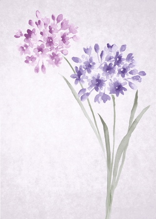 watercolor illustration flowers in simple background illustration