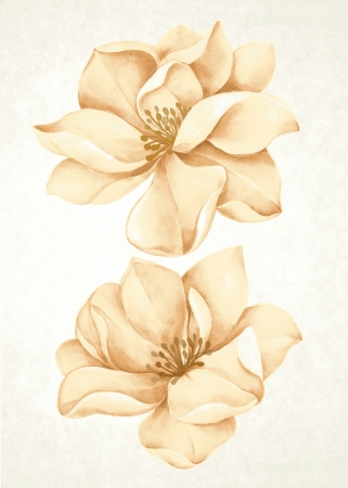 toned: watercolor illustration flowers in simple background