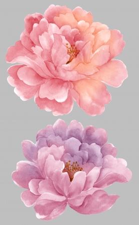 aquarel illustratie bloemen in eenvoudige achtergrond