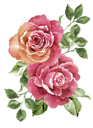 aquarel illustratie bloemen Stockfoto