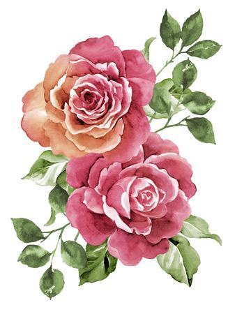 ramos de flores: Ilustraci�n de la acuarela de flores