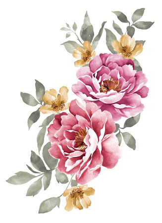 flower petal: watercolor illustration flowers