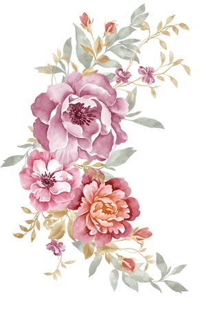botanical: watercolor illustration flowers in simple background