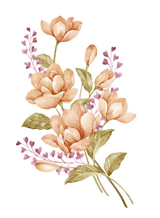 botanical drawing: watercolor illustration bouquet in simple white background