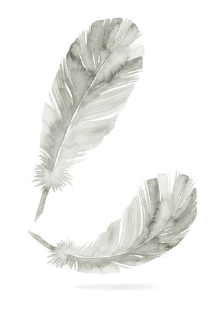 Feathers painted with watercolors on white background. Stock fotó