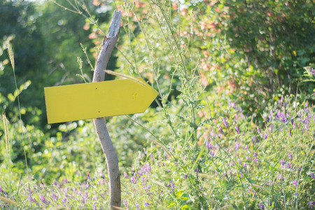 yellow direction sign in a beautiful sunny meadow 免版税图像