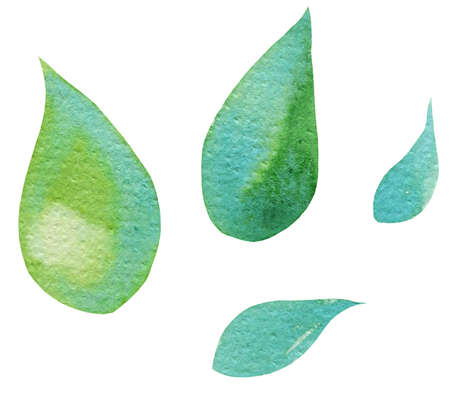 hand draw watercolor leaves, illusration, sketch, green color, blue color, herbal ornament