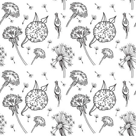 seamless pattern, hand draw black and white vector illustration dandelion, plant parts, leaves, flowers, seeds, textil