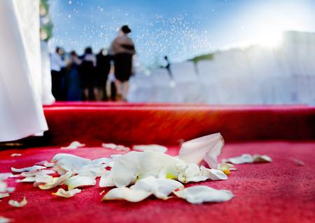 結婚式の赤いカーペットの上にバラの花びら 写真素材
