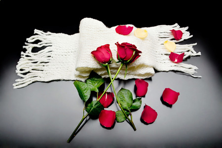 Two red roses intertwined with red petals on a black background over a scarf