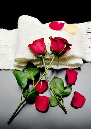 rosas rojas: dos rosas rojas junto con p�talos de color rojo sobre un fondo negro en una poes�a bufanda.
