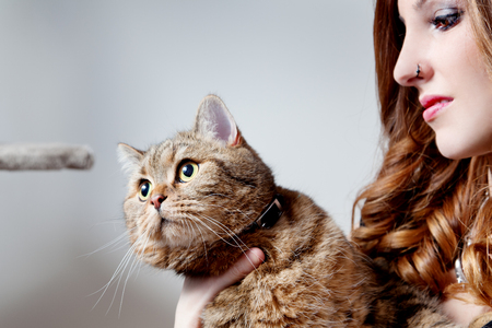 beautiful girl with her cat, neutral background.Animals with their owners Standard-Bild - 118815887