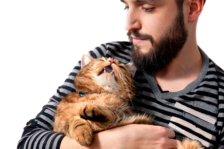 Bearded man with his beautiful cat on white background. People and pets. Animals and lifestyle owners Standard-Bild - 118815888