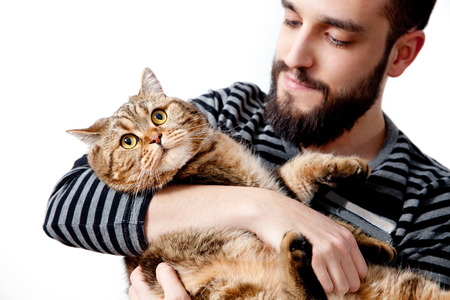 Bearded man with his beautiful cat on white background.lifestyle Standard-Bild - 118816009