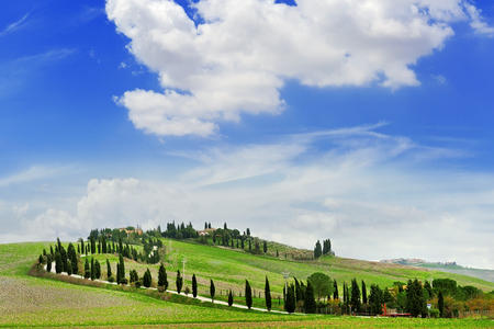 tuscany landscape: tuscany landscape panoramic view with fields, hills and cypresses, toscana, italy