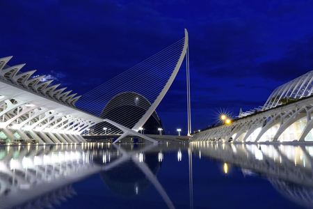 oceanographic: Valencia, Spain - scenic view of the City of Arts and Sciences and Oceanographic center at night