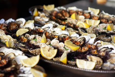 Oysters, clams, sea urchins seafood with lemon in a tray