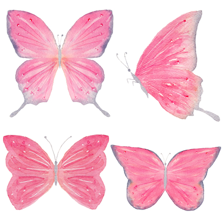 Set of hand painted watercolor butterflies. Isolated clipart for wedding, invitations, blogs, template card, birthday, baby cards, greeting, logos, bridal card. Watercolor arrangements for your design