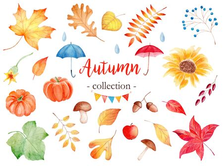 Decorative autumn season attributes watercolor raster illustrations set. Maple, poplar and rowan leaves. Forest foliage and natural food pack. Pumpkin, mushrooms and berries paintings with typography Stock Photo