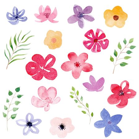 Beautiful flowers and leaves watercolor raster illustrations set. Natural summer blossom with branches, twigs. Floral buds composition isolated on white background. Gardening, floristry symbols