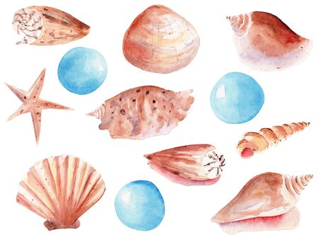 Seashells and pearls hand drawn watercolor raster illustration set. Starfish, scallop, triton isolated pack. Precious gem aquarelle drawing. Underwater objects colorful graphic design element
