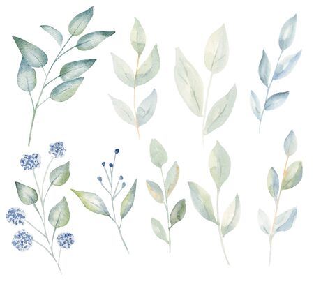 Branches with leaves and blossoms watercolor raster illustration set. Fresh herbage aquarelle drawing collection. Beautiful botanical design element bundle. Hand drawn eco painting pack