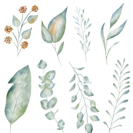 Green leaves and flowers watercolor raster illustration set. Fresh vegetation aquarelle drawing collection. Creative greenery design element bundle. Hand drawn botanical painting pack