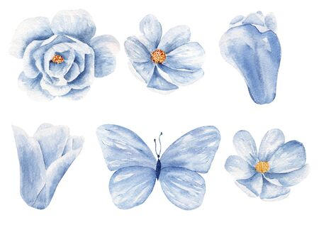 Blue flowers and butterfly watercolor raster illustration set. Spring blossoms and moth aquarelle drawing collection. Decorative floral design elements bundle. Creative hand drawn painting pack Stock Photo