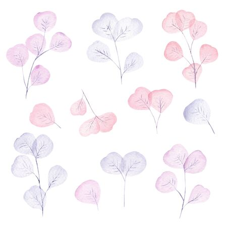 Watercolor pastel pink and light blue leaves and branch set. Hand painted floral illustration isolated on white background.
