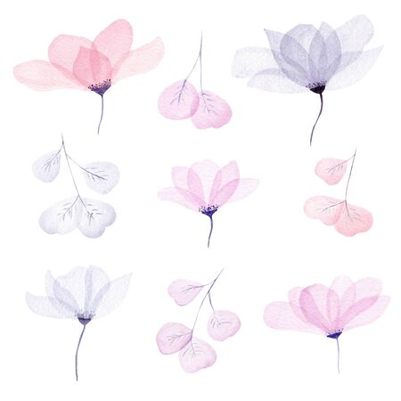 Watercolor floral illustration set. Cute delicate flowers and leaves in neutral pastel color collection. Wedding stationary, greetings, wallpapers, fashion, background graphics.