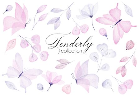 Watercolor hand drawn tenderly set with butterfly, flower, leaf and branch. Pastel color illustration. Springtime clipart collection.