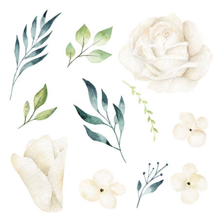 White flowers, petals, greenery leaves and branches watercolor clipart set.