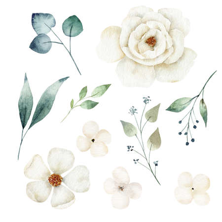 Watercolor white flower and greenery leaves set. Hand painted clipart.