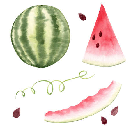 Set of watermelon clipart. Fresh summer watercolor illustration. Graphics for kitchen and party decor, menus, stickers, papers.