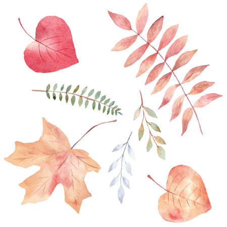 Watercolor set of orange and greenery leaves clipart. Fall illustration. Hand painted graphics for invitations, greeting cards, scrapbooking, diy. 免版税图像