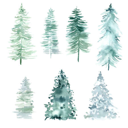 Watercolor forest pine trees for Christmas and Happy New Year. Hand painted clipart isolated on white background. 免版税图像