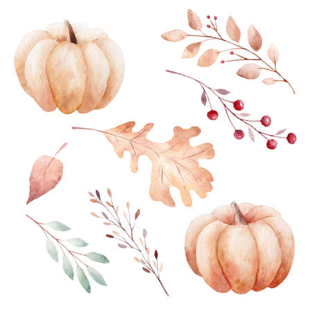 Watercolor fall pumpkins, leaves and berries isolated on white background. Clipart set of autumn elements. Graphics for invitations, greeting cards, diy, scrapbooking.