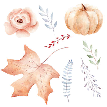 Hand painted fall and greenery leaves, pumpkin, flower. Watercolor clipart set. Graphic illustration design elements isolated on white background.