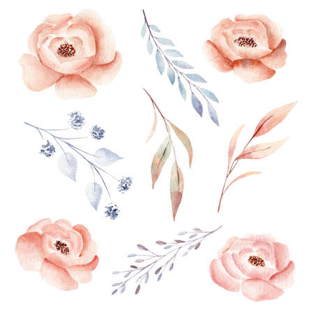 Watercolor flower and branch leaves. Fall clipart. Hand drawn design elements. Perfect for invitations, greeting cards, scrapbooking, diy. 免版税图像