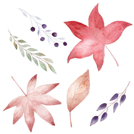 Watercolor collection of autumn leaves isolated on white background. Fall clipart. Hand painted illustration for diy scrapbooking.