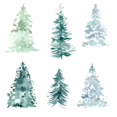 Watercolor pine trees clipart. Hand painted illustration for winter and christmas graphics, invitations, cards, packaging, diy scrapbooking. 免版税图像
