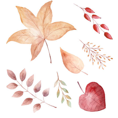 Watercolor orange fall leaves isolated on white background. Hand drawn design elements. Clipart for thanksgiving card, invitations, scrapbooking. 免版税图像